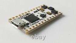 Kit De Bricolage Personnalisé Neo Pixel Fiche Produit V2.2 16 Go Sd Lightsaber Electronic Kit